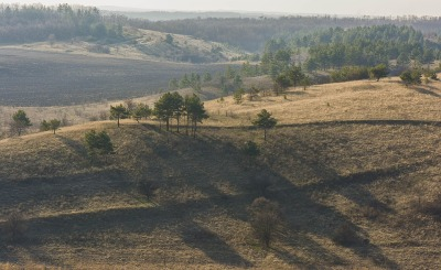 landscape-2401810_960_720